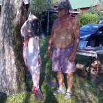 52 kg-os Busa, Csiri Ferenc