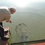 Csiri Ferenc, 2012.05.20, 7,32 kg ponty
