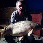 2017.04. Becsei Pál, súly - 10,30 kg, fűzött csemege kukorica.